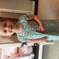 Lillian pin tuck dress