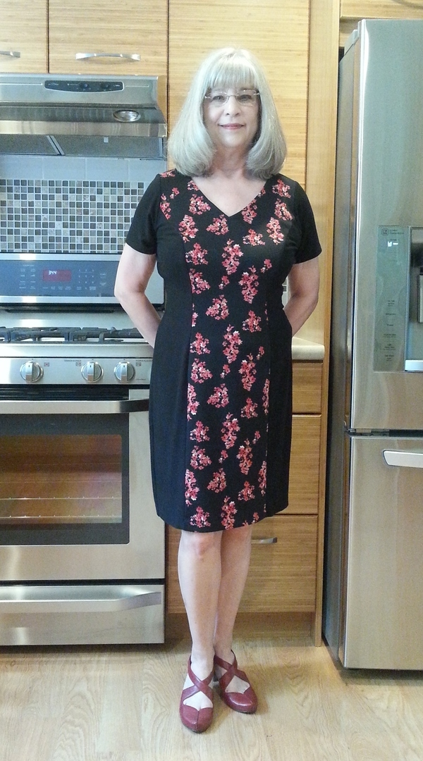 Simplicity 1586 Misses Dress